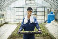 苗を持つ笑顔の農婦