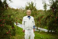 リンゴ畑の笑顔の農夫