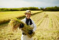 稲を抱える笑顔の農夫 11070018558| 写真素材・ストックフォト・画像・イラスト素材|アマナイメージズ