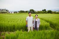 水田に立つ農家夫婦