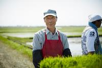 田植えをする笑顔の農夫