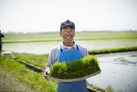 稲の苗を持つ笑顔の農夫