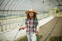 ビニールハウスの中の笑顔の農婦