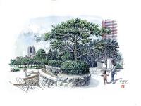 仙台城下町百景 勾当台公園 11070018975| 写真素材・ストックフォト・画像・イラスト素材|アマナイメージズ