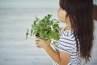 観葉植物を持つ女の子