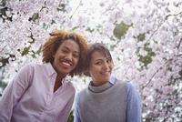 笑顔の外国人女性2人と桜