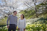桜咲く公園に立つ外国人カップル