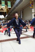 青葉まつりのすずめ踊り 宮城県 11070023909| 写真素材・ストックフォト・画像・イラスト素材|アマナイメージズ