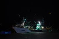 震災後のさんま漁の漁船 宮城県 11070024823| 写真素材・ストックフォト・画像・イラスト素材|アマナイメージズ