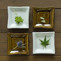 4枚の角皿の上にのった花や葉