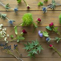 テーブルの上の花や葉 11070025657| 写真素材・ストックフォト・画像・イラスト素材|アマナイメージズ