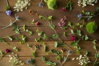 テーブルの上の花や葉 11070025670| 写真素材・ストックフォト・画像・イラスト素材|アマナイメージズ
