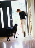 玄関から外へ出る女性と黒い犬 11070025844| 写真素材・ストックフォト・画像・イラスト素材|アマナイメージズ