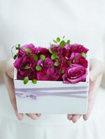 プレゼントを持つ女性の手元 11070027011| 写真素材・ストックフォト・画像・イラスト素材|アマナイメージズ
