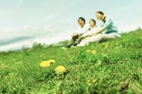 タンポポ咲く土手に座るファミリー 11070027632| 写真素材・ストックフォト・画像・イラスト素材|アマナイメージズ