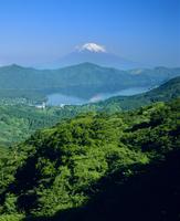箱根大観山より新緑の芦ノ湖と富士山