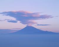 伊豆市だるま山高原からの雲海と富士山 11076000053| 写真素材・ストックフォト・画像・イラスト素材|アマナイメージズ