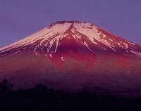北富士演習場梨ヶ原からの朝焼け富士山 11076000111| 写真素材・ストックフォト・画像・イラスト素材|アマナイメージズ