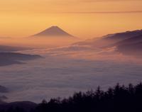高ボッチ高原からの雲海と朝焼け富士山 11076000199| 写真素材・ストックフォト・画像・イラスト素材|アマナイメージズ
