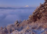 百蔵山の雪景色と雲海の富士山 11076000425| 写真素材・ストックフォト・画像・イラスト素材|アマナイメージズ