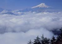 百蔵山より雲海と富士山