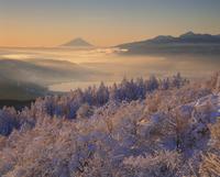 高ボッチ高原の雪景色と諏訪湖,富士山,南アルプス 11076000662| 写真素材・ストックフォト・画像・イラスト素材|アマナイメージズ