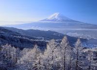 西川新倉林道の雪景色と富士山 11076000805| 写真素材・ストックフォト・画像・イラスト素材|アマナイメージズ