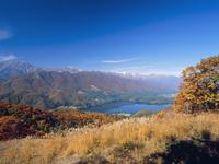 美麻の権現山より紅葉の青木湖と白馬三山 11076000852| 写真素材・ストックフォト・画像・イラスト素材|アマナイメージズ