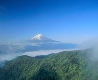 三ツ峠より雲海と新緑の富士山