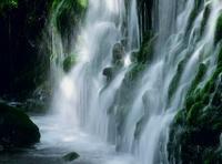 鳥海山山麓 元滝伏流水