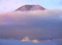 内野より雲海と赤富士