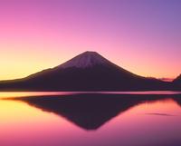 朝焼けの精進湖と富士山