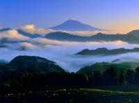 清水吉原から雲海と富士山 11076002187| 写真素材・ストックフォト・画像・イラスト素材|アマナイメージズ