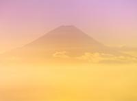 櫛形林道より雲海と富士山 11076002206| 写真素材・ストックフォト・画像・イラスト素材|アマナイメージズ