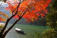 嵐山 紅葉の嵐峡と屋形船