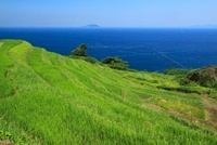 新井の千枚田と若狭湾