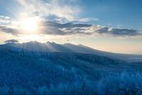 霧ヶ峰高原 霧氷と八ケ岳、朝日 11076002855| 写真素材・ストックフォト・画像・イラスト素材|アマナイメージズ