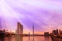 東京スカイツリーと朝焼けの光芒