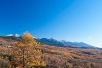 蓼科高原より紅葉と八ケ岳