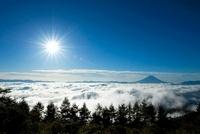 甘利山より太陽と富士山 11076002997| 写真素材・ストックフォト・画像・イラスト素材|アマナイメージズ