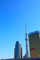 東京スカイツリー 11076003095  写真素材・ストックフォト・画像・イラスト素材 アマナイメージズ