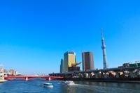 東京スカイツリーと隅田川、観光船