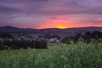 山の辺の道 二上山と夕日