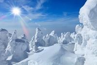 蔵王の樹氷と太陽 11076004421| 写真素材・ストックフォト・画像・イラスト素材|アマナイメージズ