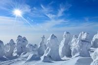 蔵王の樹氷と太陽 11076004456| 写真素材・ストックフォト・画像・イラスト素材|アマナイメージズ
