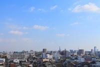 名古屋市街と名古屋城 11076004588| 写真素材・ストックフォト・画像・イラスト素材|アマナイメージズ