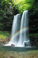 新緑の夫婦滝と虹