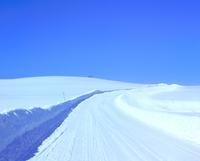 雪原の道 11076005164  写真素材・ストックフォト・画像・イラスト素材 アマナイメージズ