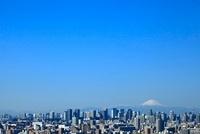 東京のビル群と富士山