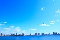 東京港より東京の街並と鳥